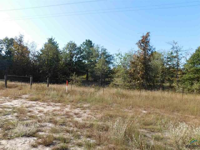 000 E State Highway 154, Winnsboro, TX 75494 (MLS #10127747) :: Griffin Real Estate Group