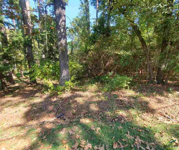 TBD Lakeview Dr, Bullard, TX 75757 (MLS #10127781) :: Griffin Real Estate Group