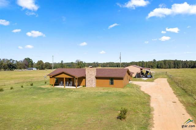 667 County Road 4218, Naples, TX 75568 (MLS #10127925) :: Griffin Real Estate Group