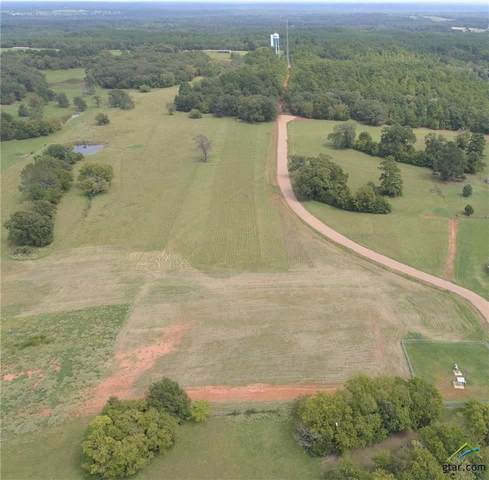 455 Pr 8816, Ben Wheeler, TX 75754 (MLS #10127967) :: Griffin Real Estate Group
