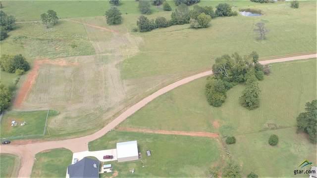 505 Pr 8816, Ben Wheeler, TX 75754 (MLS #10127972) :: Griffin Real Estate Group
