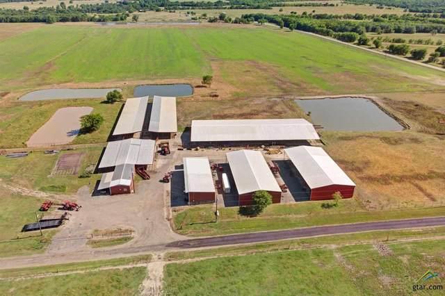 1188acres Farm Road 2285, Sulphur Springs, TX 75482 (MLS #10128053) :: RE/MAX Professionals - The Burks Team