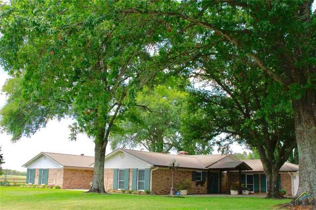 1481 Vz County Road 1507, Van, TX 75790 (MLS #10128100) :: RE/MAX Professionals - The Burks Team