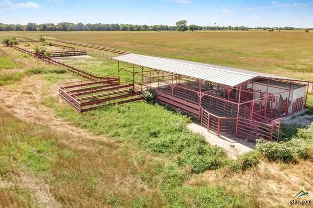 TBD Farm Road 2285, Sulphur Springs, TX 75482 (MLS #10128111) :: RE/MAX Professionals - The Burks Team