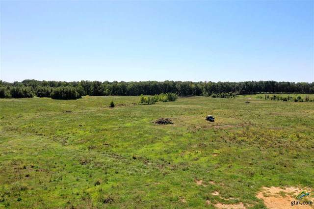 106 Acres County Road 4621, Annona, TX 75550 (MLS #10128392) :: Griffin Real Estate Group