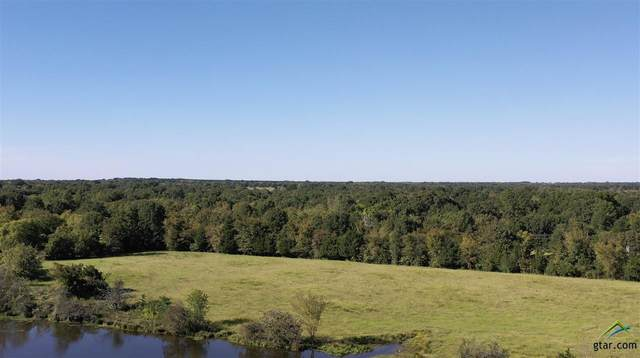 TBD SE Farm To Market 44, Annona, TX 75550 (MLS #10128395) :: Griffin Real Estate Group