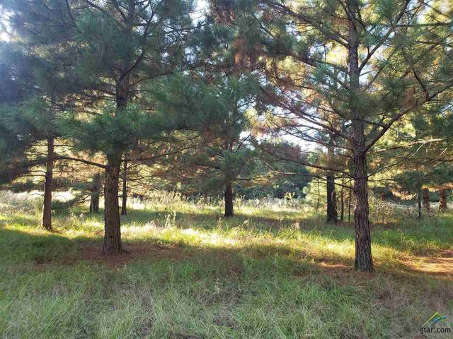 TBD Hwy 271, Winona, TX 75792 (MLS #10128410) :: Griffin Real Estate Group