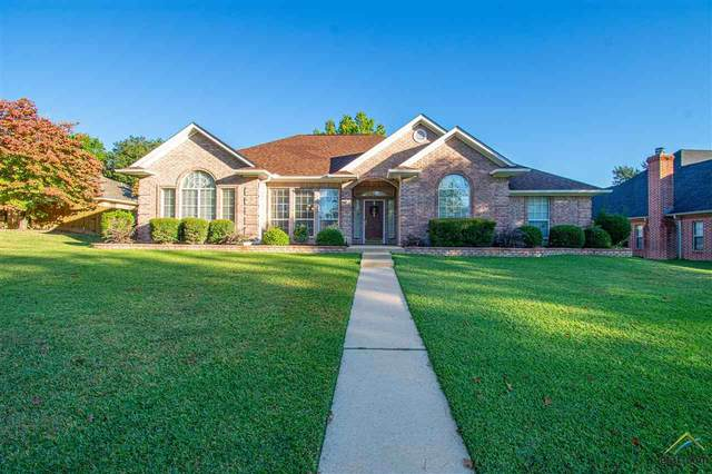 1217 Spring Branch Dr, Tyler, TX 75703 (MLS #10128414) :: Griffin Real Estate Group