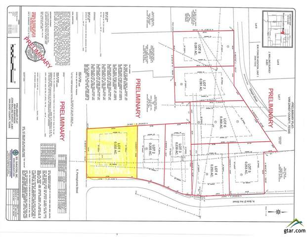 Lot 1 Bois D Arc, Van, TX 75790 (MLS #10128487) :: The Wampler Wolf Team