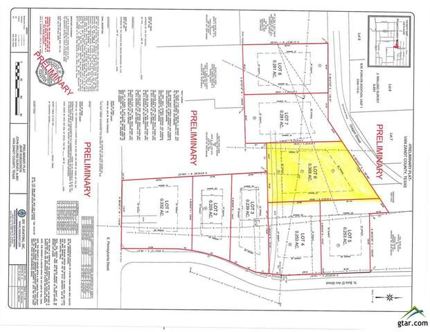 Lot 6 Bois D Arc, Van, TX 75790 (MLS #10128493) :: The Wampler Wolf Team