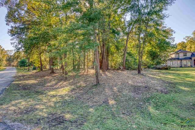 17770 Sunshine Lane, Troup, TX 75789 (MLS #10128571) :: Griffin Real Estate Group