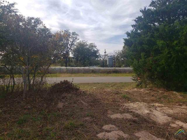TBD S Cr 420, Tyler, TX 75704 (MLS #10128588) :: Griffin Real Estate Group