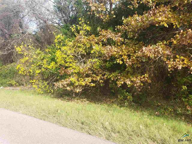 TBD S Cr 420, Tyler, TX 75704 (MLS #10128594) :: Griffin Real Estate Group