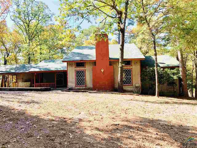 1471 W Holly Trail, Holly Lake Ranch, TX 75765 (MLS #10128624) :: Griffin Real Estate Group