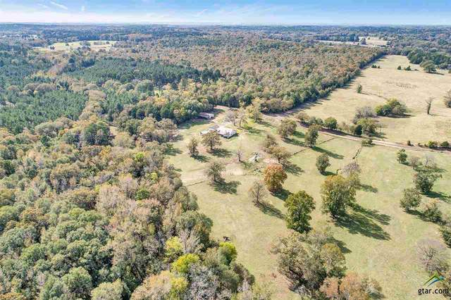 000 Cr 3287, Quitman, TX 75783 (MLS #10128627) :: Griffin Real Estate Group