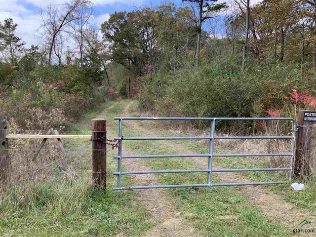 TBD N Sh 155, Winona, TX 75792 (MLS #10128657) :: Griffin Real Estate Group