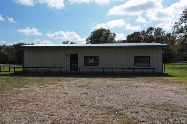 1411 W Frank St, Grand Saline, TX 75140 (MLS #10128706) :: Griffin Real Estate Group