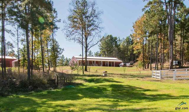 21028 State Highway 110 S, Troup, TX 75789 (MLS #10128790) :: Griffin Real Estate Group