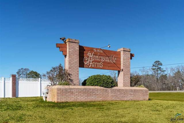 TBD Fox Glove Ln, Hallsville, TX 75650 (MLS #10128847) :: Griffin Real Estate Group