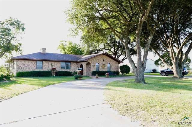 281 Vzcr 1317, Van, TX 75790 (MLS #10128853) :: Griffin Real Estate Group