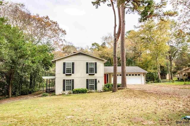 203 Treetop Lane, Hideaway, TX 75771 (MLS #10128901) :: Griffin Real Estate Group
