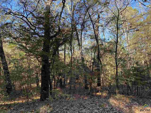 Lot #62 Whispering Willow, Flint, TX 75762 (MLS #10128920) :: Griffin Real Estate Group