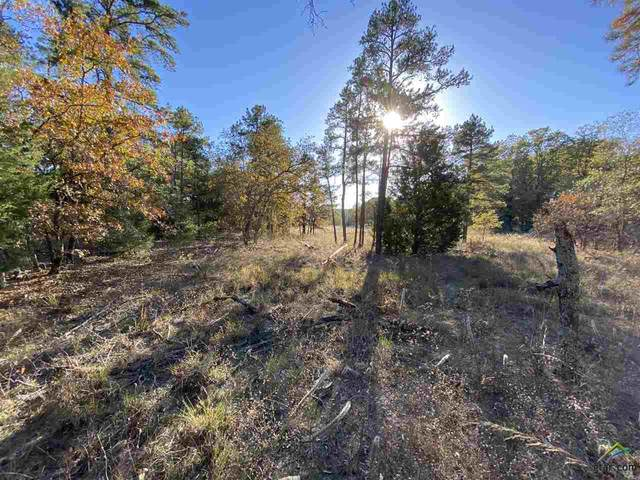 000 Fm 14, Hawkins, TX 75765 (MLS #10128942) :: Griffin Real Estate Group