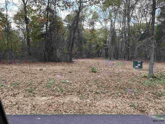 Tract 6 Old Tyler Rd., Whitehouse, TX 75791 (MLS #10128955) :: The Wampler Wolf Team