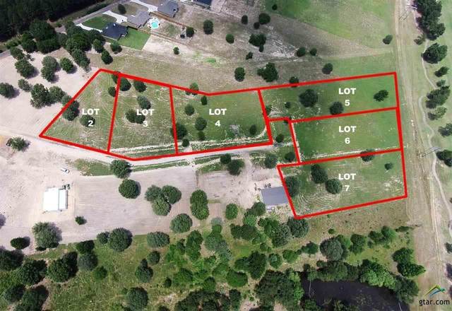 Lot 7 Babe's Landing, Lindale, TX 75771 (MLS #10128983) :: The Edwards Team Realtors