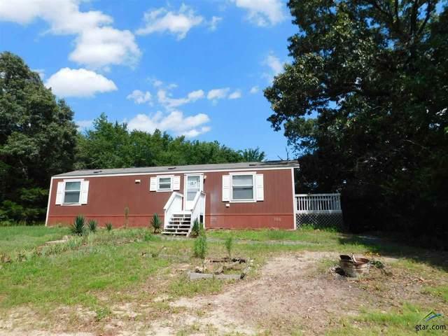 12359 Texas Highway 37 S, Winnsboro, TX 75494 (MLS #10129045) :: Griffin Real Estate Group
