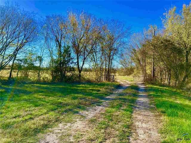 46 acres Fm 2285, Sulphur Springs, TX 75482 (MLS #10129060) :: RE/MAX Professionals - The Burks Team