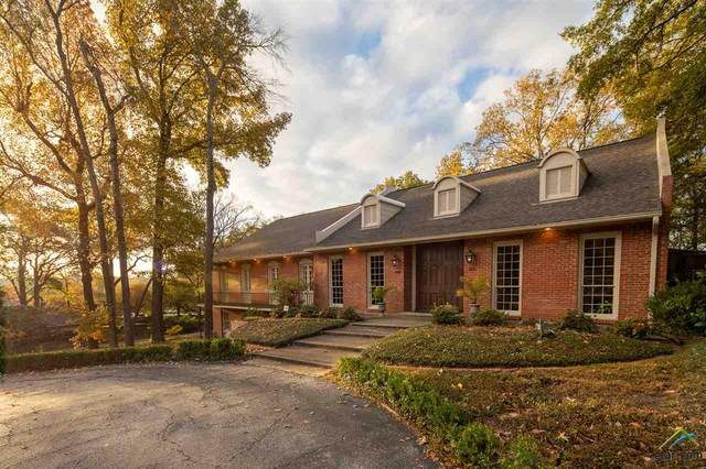 801 Pinedale Place, Tyler, TX 75701 (MLS #10129117) :: Griffin Real Estate Group