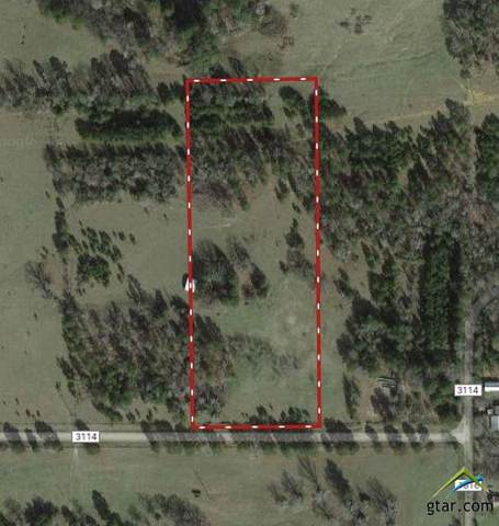 Tract 5 (TBD) Cr 3114, Jacksonville, TX 75766 (MLS #10129127) :: The Wampler Wolf Team