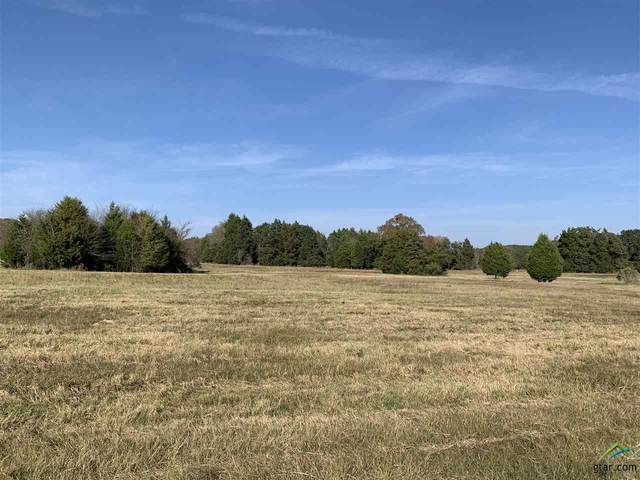 10110 Fm 2709, Eustace, TX 75124 (MLS #10129216) :: The Wampler Wolf Team