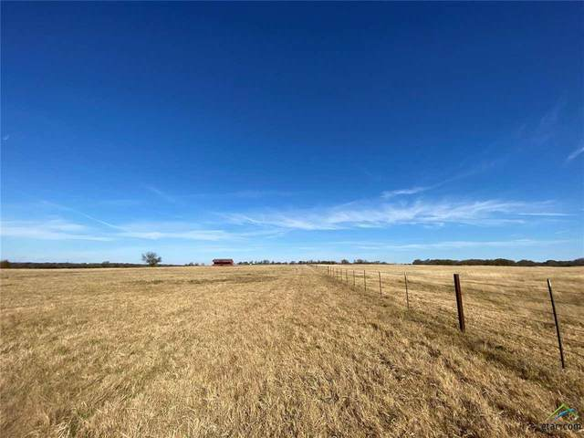 122acre Cr 4763, Sulphur Springs, TX 75482 (MLS #10129346) :: Griffin Real Estate Group