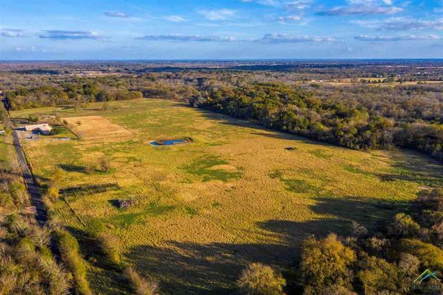 152acres Cr 4766, Sulphur Springs, TX 75482 (MLS #10129347) :: Griffin Real Estate Group