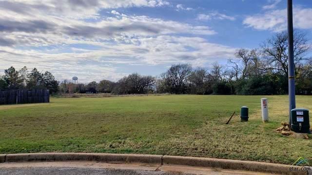 309 Savoy, Bullard, TX 75757 (MLS #10129354) :: Griffin Real Estate Group