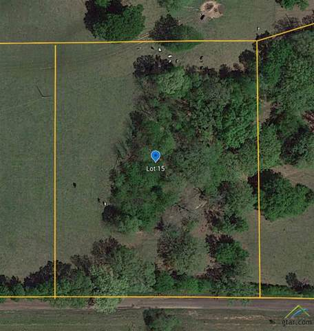 TBD (Lot 15) Cr 452, Lindale, TX 75771 (MLS #10129404) :: Griffin Real Estate Group