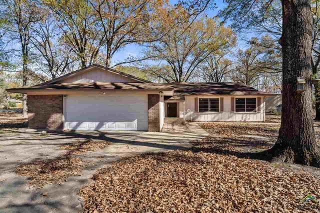 1174 Cr 4218, Mt Pleasant, TX 75455 (MLS #10129423) :: Griffin Real Estate Group