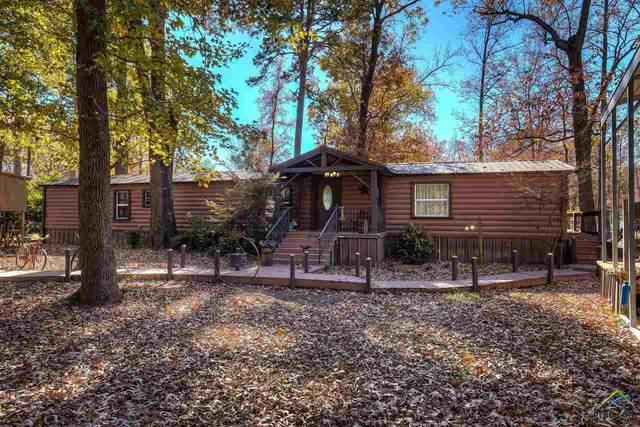 172 SE Cr 4230, Mt Vernon, TX 75457 (MLS #10129544) :: Griffin Real Estate Group