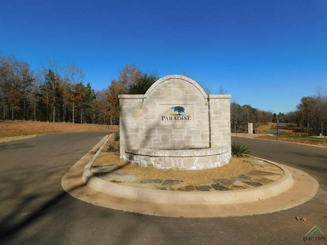 TBD Pr 52415, Leesburg, TX 75451 (MLS #10129597) :: Griffin Real Estate Group