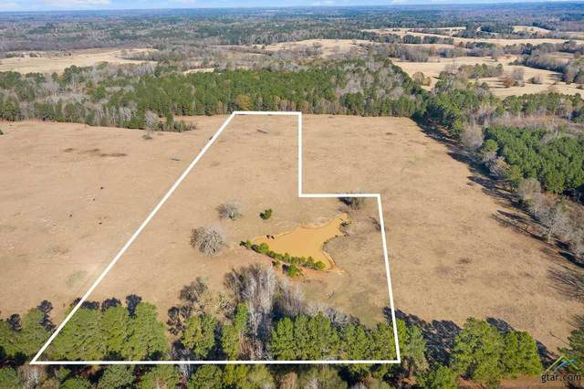 TBD Cr 4905, Troup, TX 75789 (MLS #10129673) :: Griffin Real Estate Group