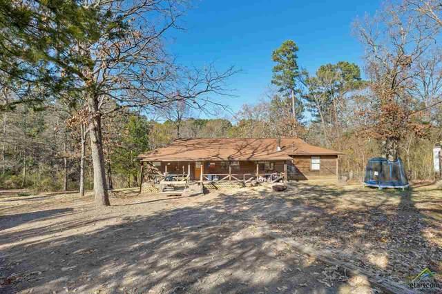 189 Marauder Circle, Ore City, TX 75683 (MLS #10129691) :: Griffin Real Estate Group