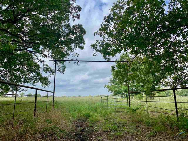Tract 2 County Road 1350, Clarksville, TX 75426 (MLS #10129765) :: RE/MAX Professionals - The Burks Team