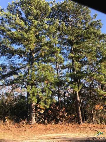 Lot 23 Autumn Woods Trail, Flint, TX 75762 (MLS #10129799) :: Griffin Real Estate Group