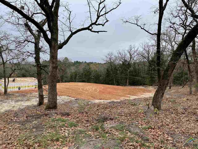 TBD Cr 2558, Mineola, TX 75773 (MLS #10129885) :: Wood Real Estate Group