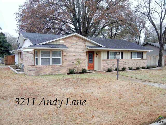 3211 Andy Lane, Tyler, TX 75701 (MLS #10129886) :: Griffin Real Estate Group
