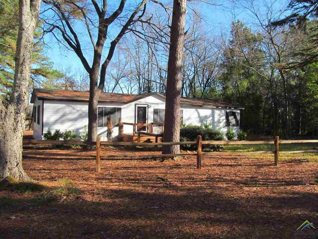166 Cr 1421, Quitman, TX 75783 (MLS #10129902) :: The Edwards Team Realtors