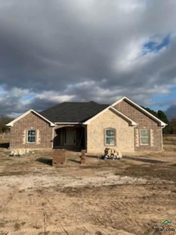 201 Briarwood Lane, Emory, TX 75440 (MLS #10129919) :: Griffin Real Estate Group