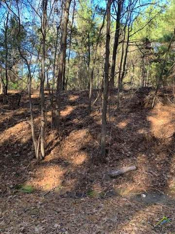 18245 Cr 361 (19.5 Acre), Winona, TX 75792 (MLS #10129924) :: Griffin Real Estate Group